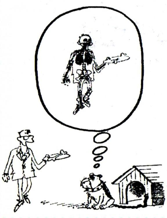 Малюнок  про собак, кістки, чорний журнал перець