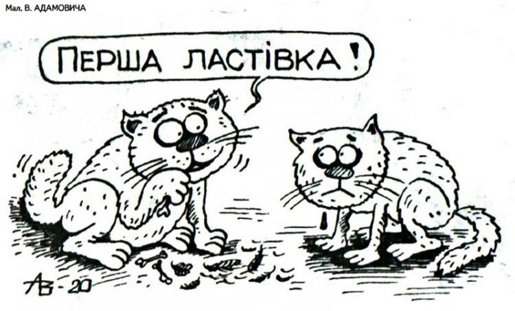 Малюнок  про ластівку, котів, жорстокий, чорний журнал перець