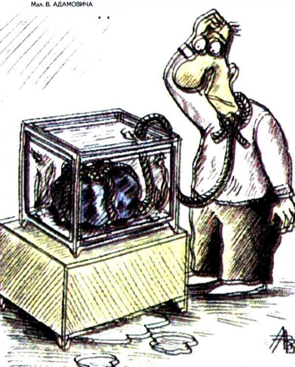 Малюнок  про акваріум, самогубство журнал перець