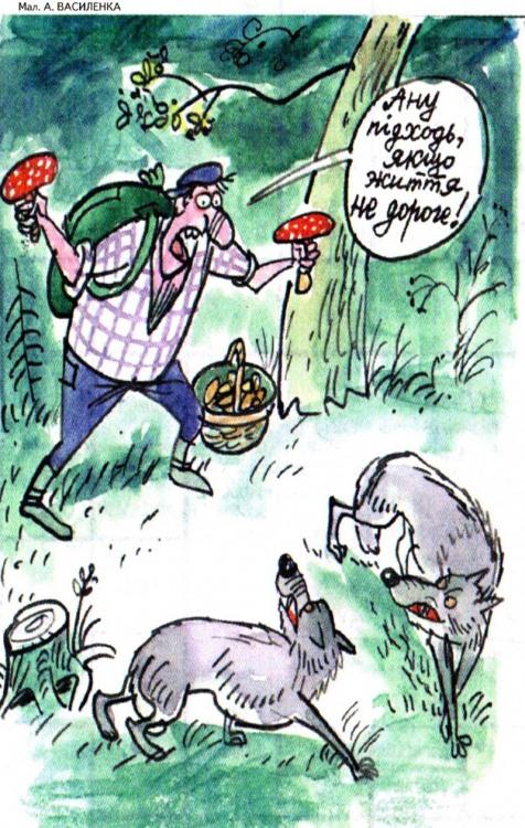 Малюнок  про грибників, гриби, вовків журнал перець