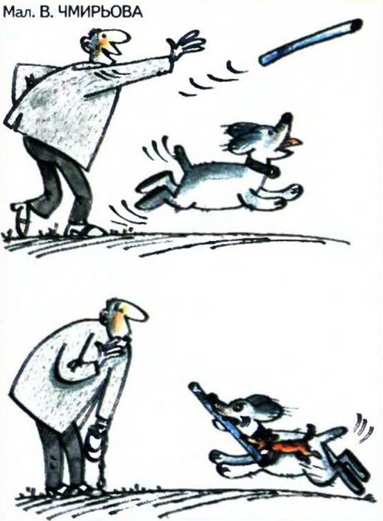 Малюнок  про собак, палицю журнал перець