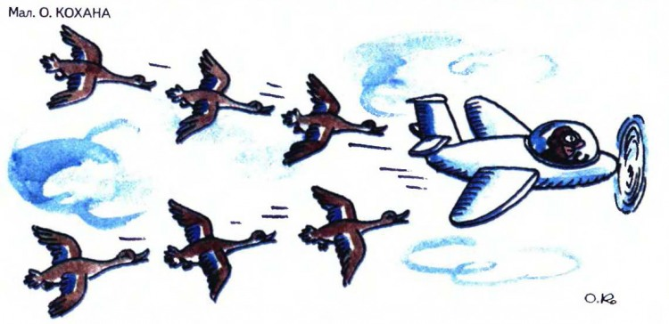 Малюнок  про гусей, літаки журнал перець