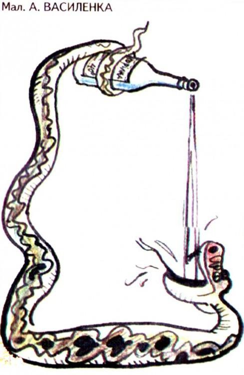 Малюнок  про змій, алкоглоль журнал перець