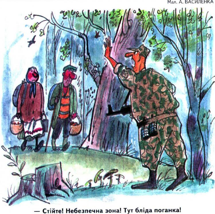 Малюнок  про грибників, гриби, військових журнал перець