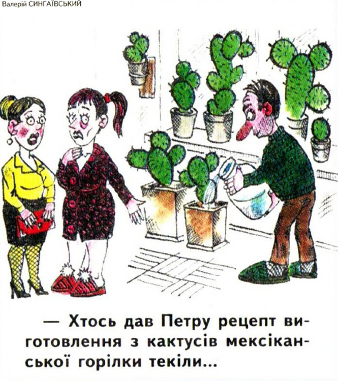 Малюнок  про кактус, текілу журнал перець