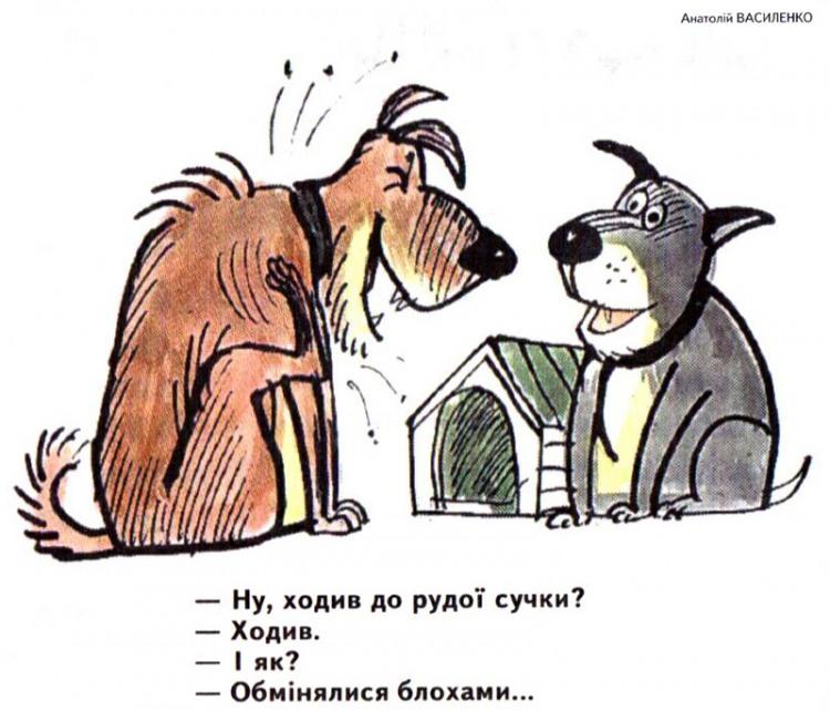 Малюнок  про собак, блох, суку журнал перець
