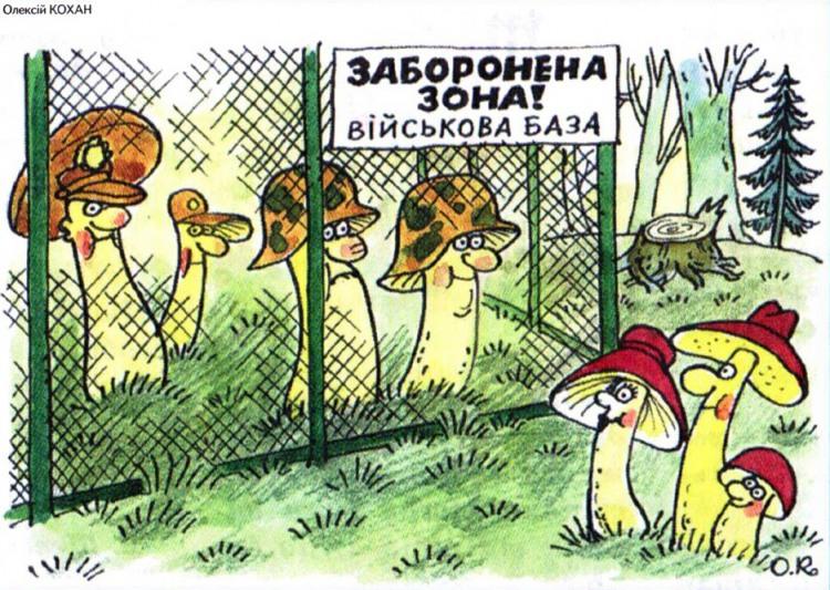 Малюнок  про гриби, військових журнал перець