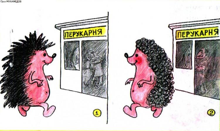 Малюнок  про їжаків, перукаря журнал перець