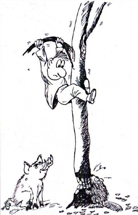 Малюнок  про кабанів, бобрів, чорний журнал перець