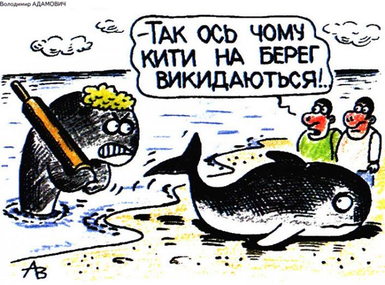 Малюнок  про китів, качалку, чорний журнал перець