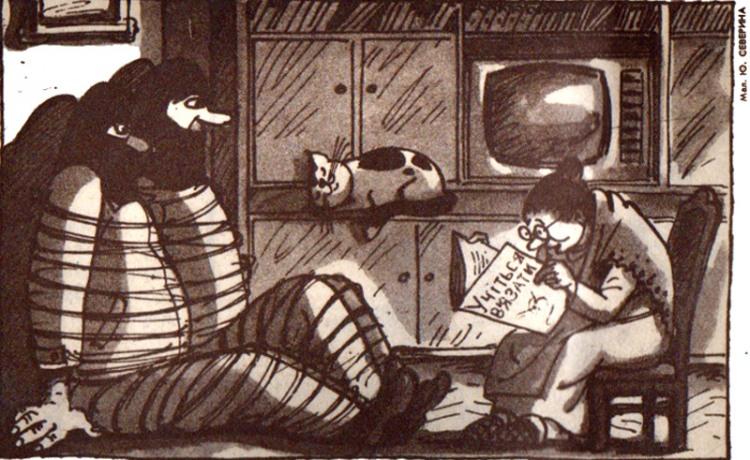 Малюнок  про пограбування, бабусь, в'язання журнал перець