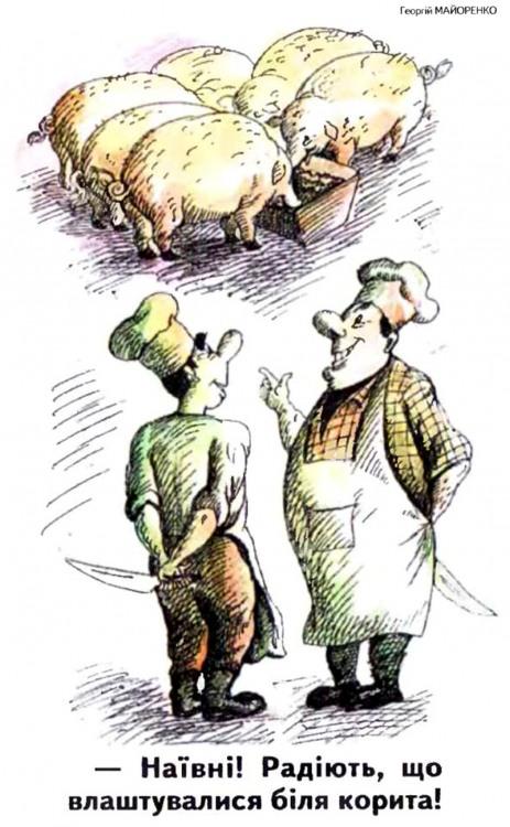 Малюнок  про свиней, кухарів, цинічний журнал перець