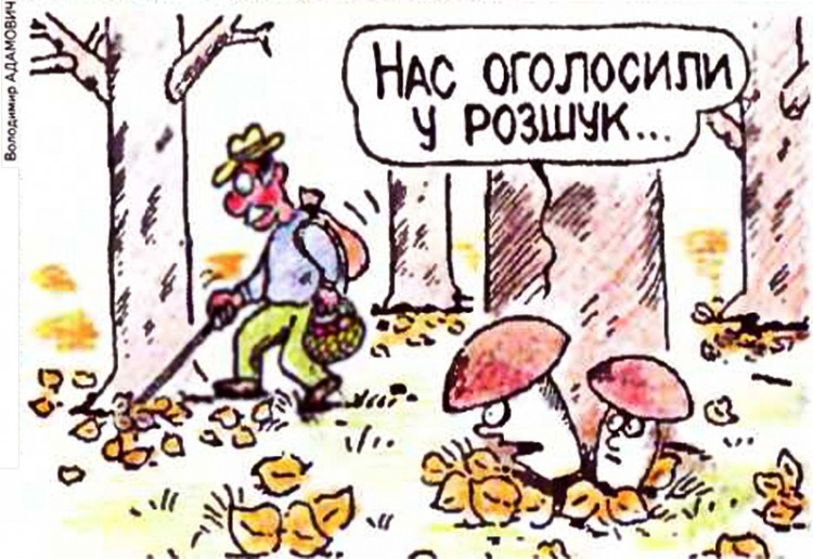 Малюнок  про грибників, гриби журнал перець