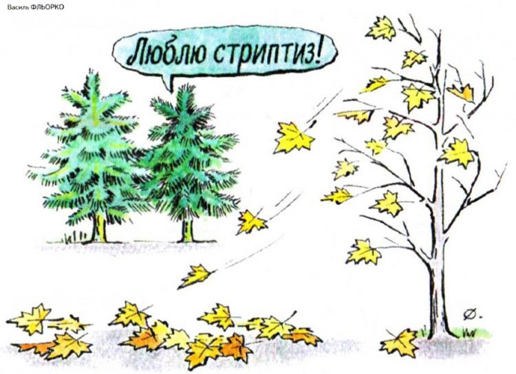 Малюнок  про дерево, стриптиз журнал перець