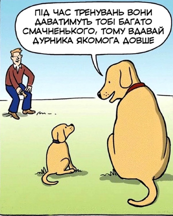 Малюнок  про собак