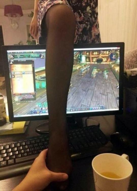 Фото прикол  про комп'ютерні ігри, дівчат та ноги