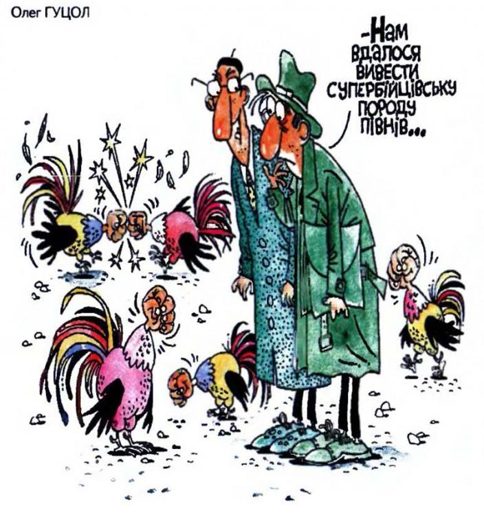 Малюнок  про півня, бійку журнал перець