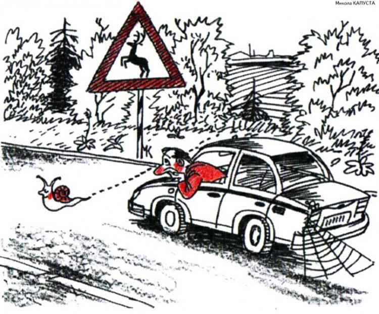Малюнок  про равлика, автомобілі, очікування журнал перець