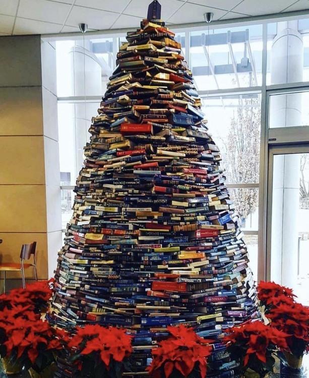 Фото прикол  про ялинку, книги, бібліотеку та новий рік
