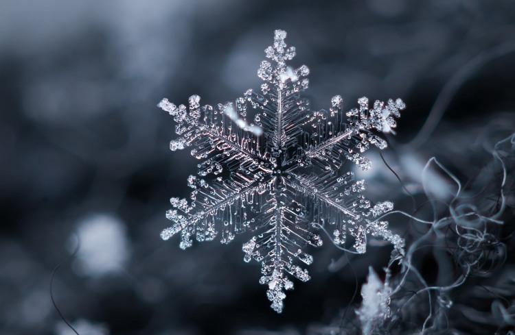 Фото прикол  про сніжинки