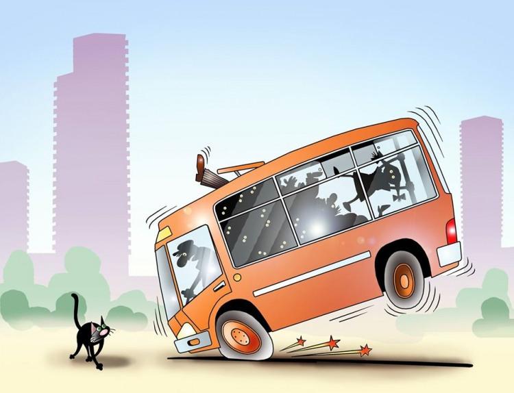 Малюнок  про чорного кота та автобус