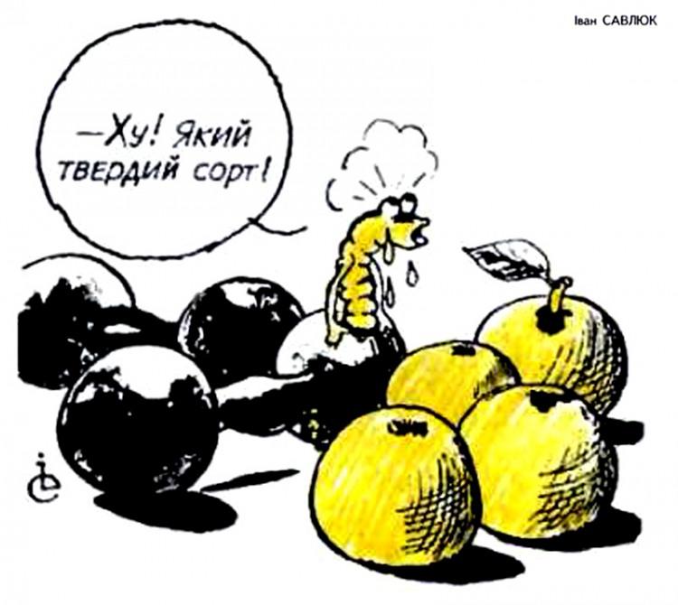 Малюнок  про гусінь, гантелі журнал перець