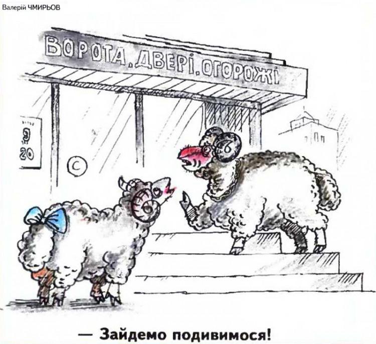 Малюнок  про баранів, ворота журнал перець