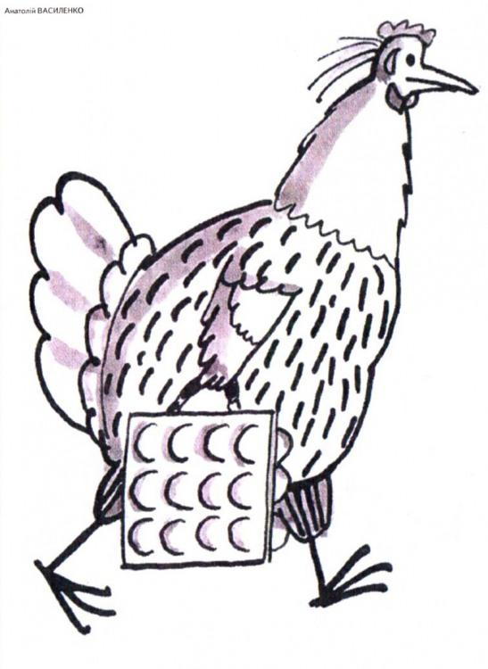 Малюнок  про кур, яйця журнал перець