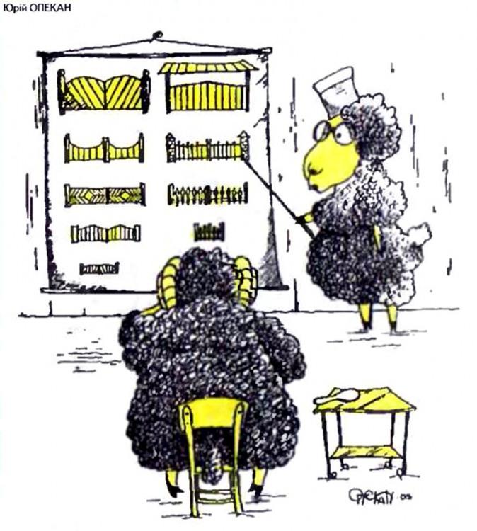 Малюнок  про баранів, ворота, офтальмологів журнал перець
