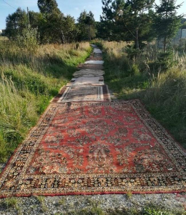 Фото прикол  про шляхи та килим