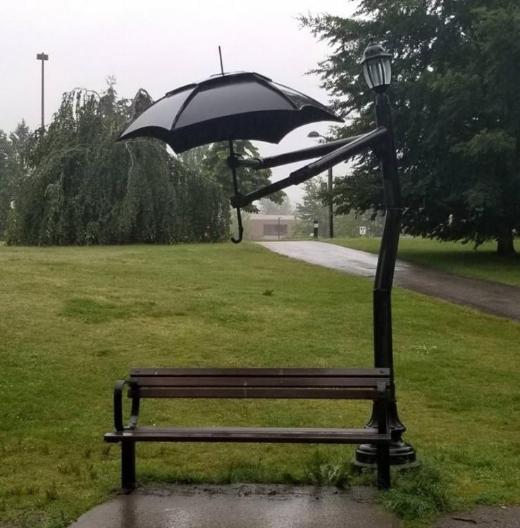 Фото прикол  про парасольку та лавку