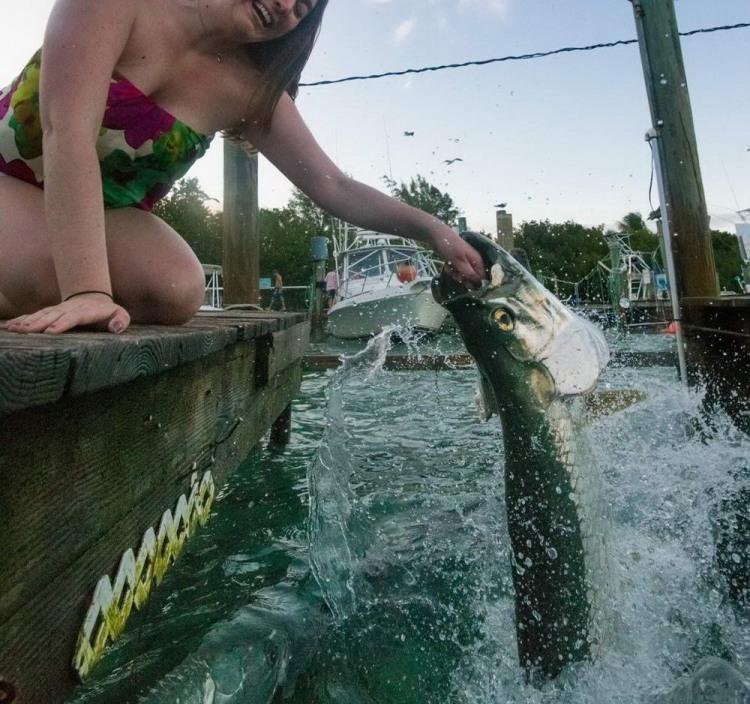 Фото прикол  про рибу