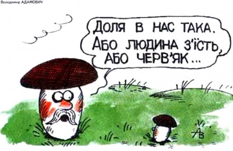 Малюнок  про гриби журнал перець