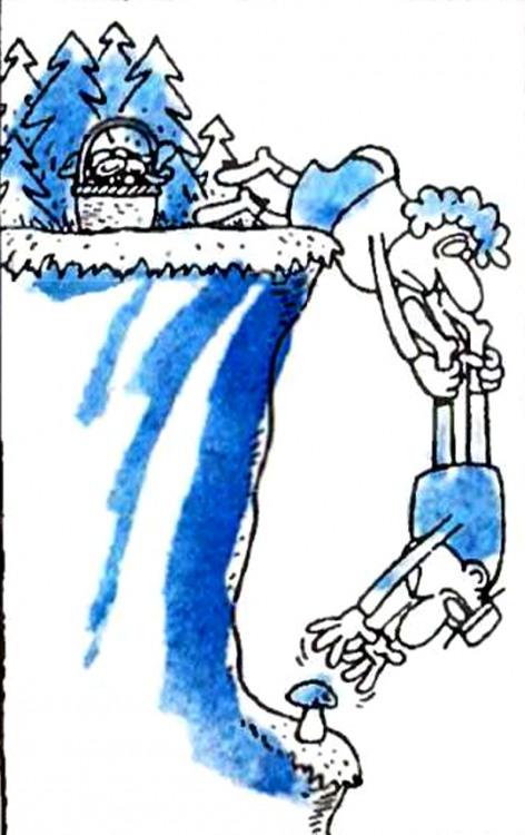 Малюнок  про грибників, гриби, чорний журнал перець