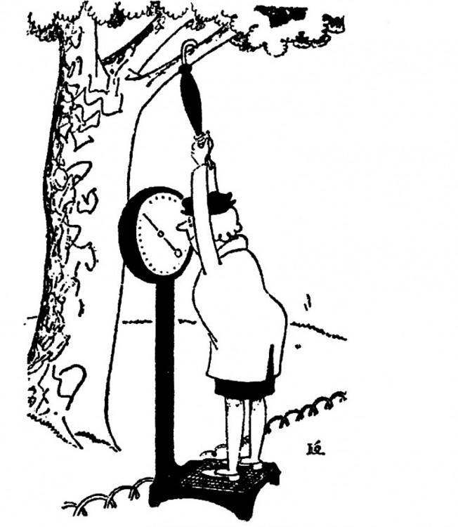 Малюнок  про ваги, жінок журнал перець