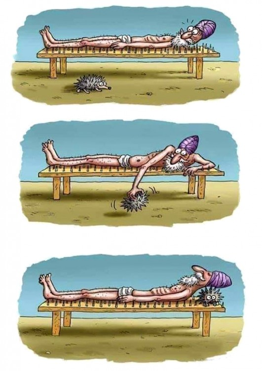 Малюнок  про йогу та їжаків