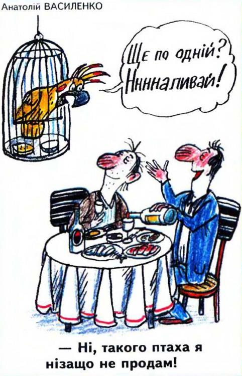 Малюнок  про папуг, п'яних журнал перець