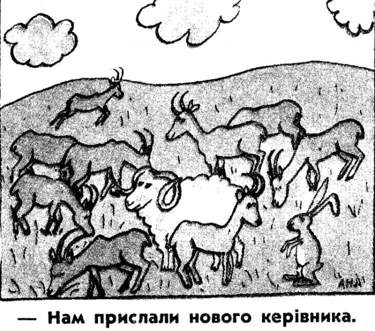 Малюнок  про баранів, цапів журнал перець