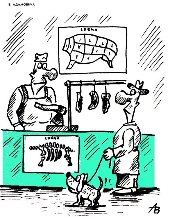 Малюнок  про кістки, м'ясо, собак журнал перець
