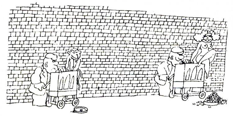 Малюнок  про катеринку, вульгарний журнал перець