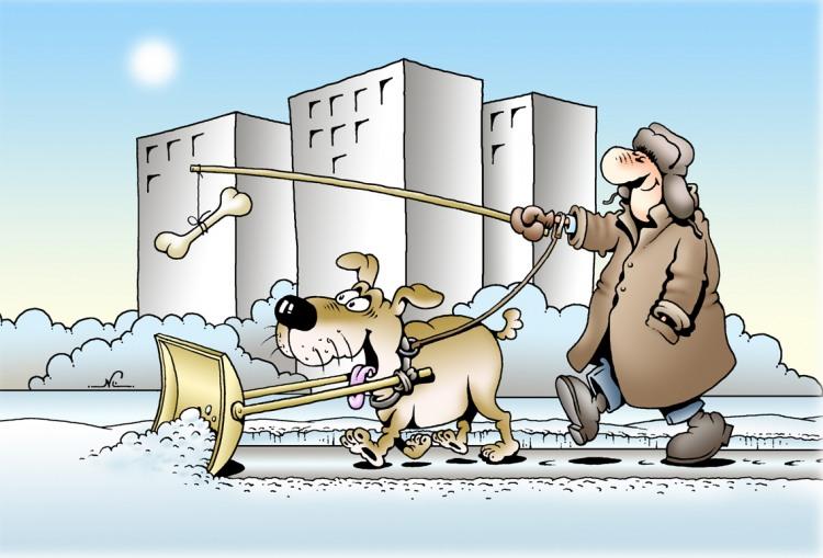 Малюнок  про собак, сніг та кістки
