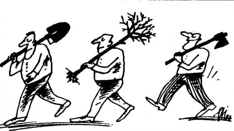 Малюнок  про дерево журнал перець