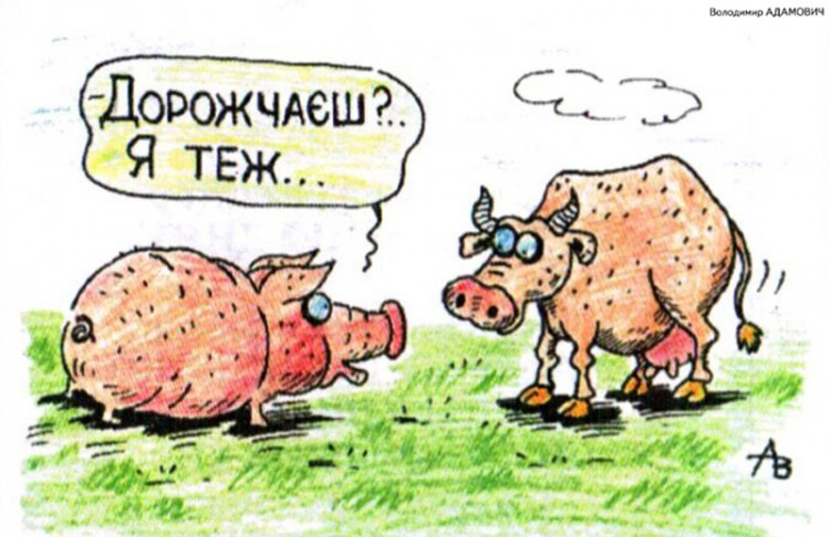 Малюнок  про свиней, корову журнал перець