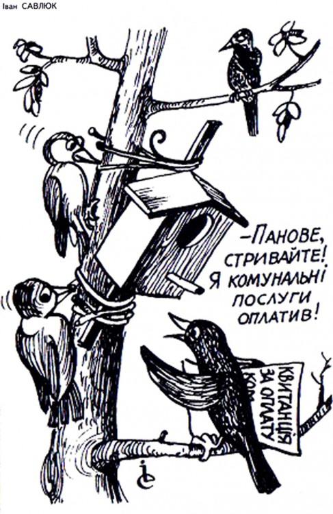 Малюнок  про шпаківню, жкг журнал перець