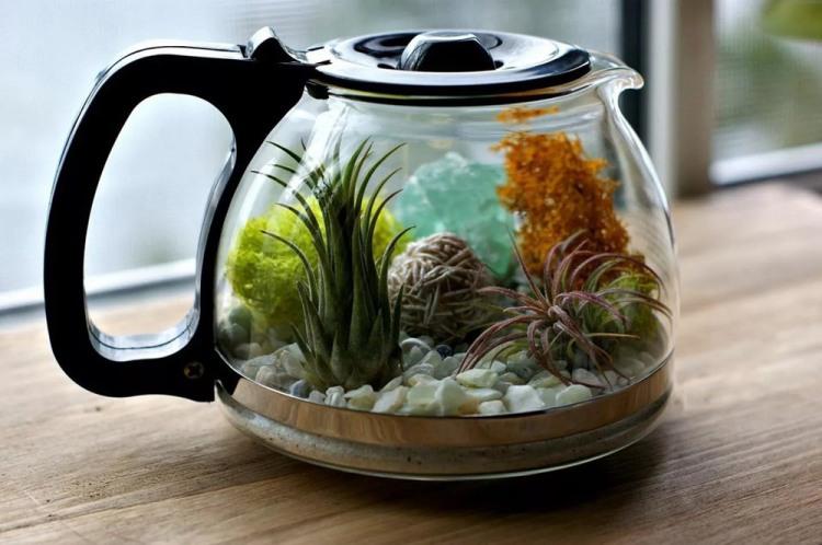 Фото прикол  про чайник