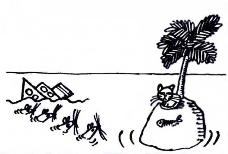 Малюнок  про безлюдний острів, котів, щурів журнал перець