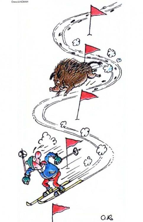 Малюнок  про лижників, кабанів, чорний журнал перець