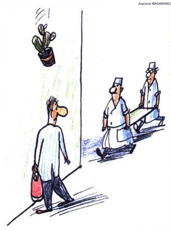 Малюнок  про кактус, санітарів, падіння, чорний журнал перець