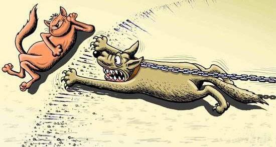 Малюнок  про котів та собак