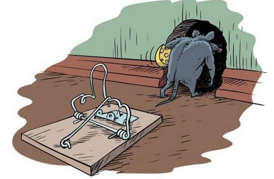 Малюнок  про мишей та мишоловку